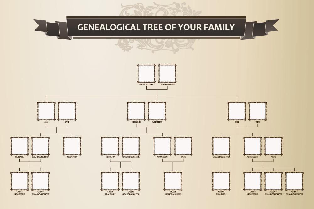 A blank Family Tree diagram