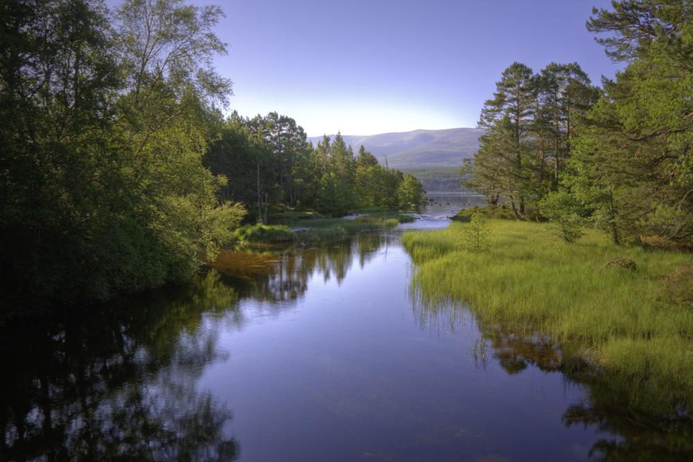 River Luineag flowing into Loch Morlich