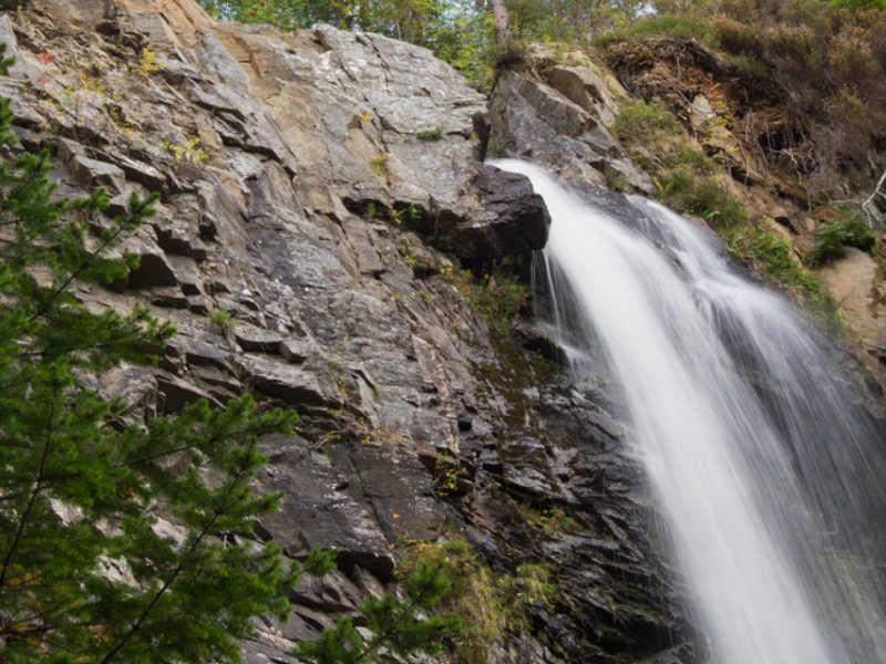 Plodda Falls Waterfall