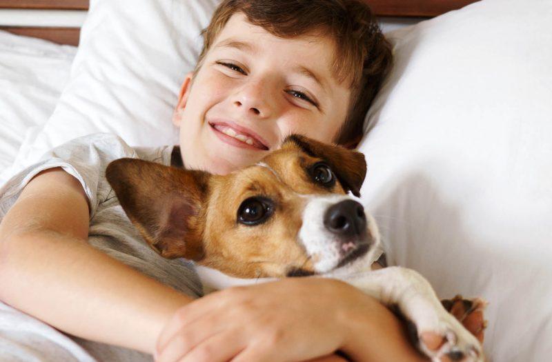 a boy cuddling his dog in bed